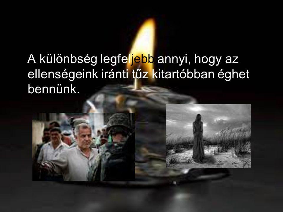 A különbség legfeljebb annyi, hogy az ellenségeink iránti tűz kitartóbban éghet bennünk.