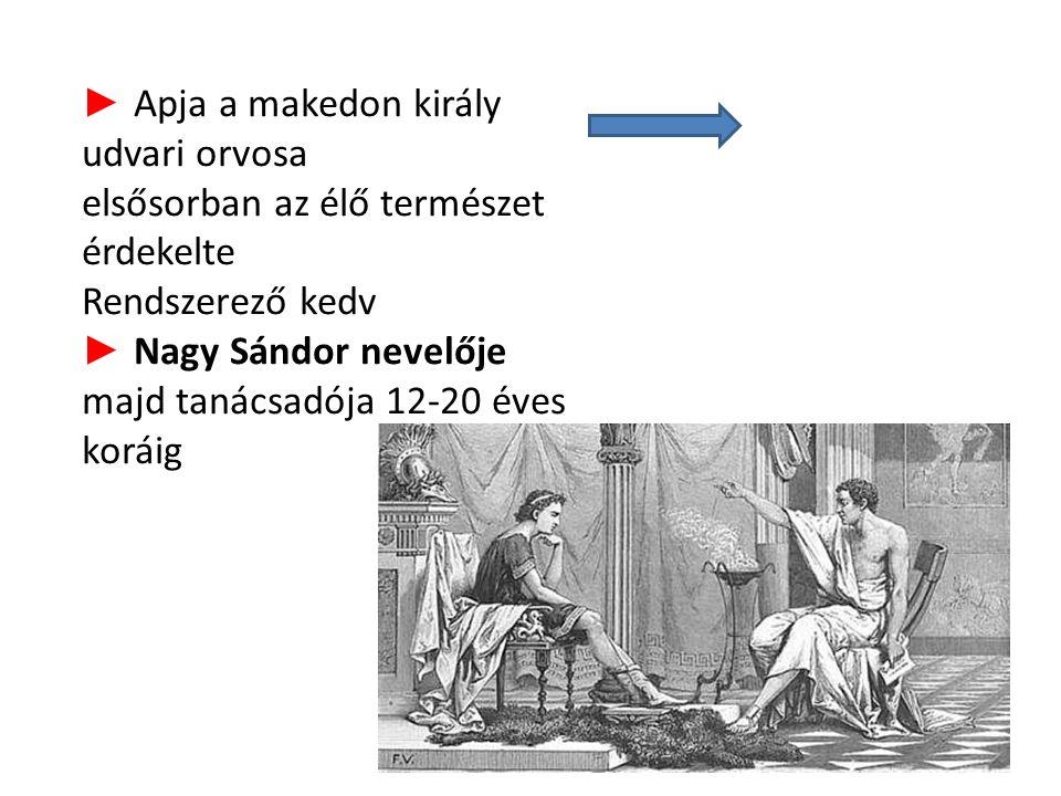 ► Apja a makedon király udvari orvosa elsősorban az élő természet érdekelte Rendszerező kedv ► Nagy Sándor nevelője majd tanácsadója 12-20 éves koráig