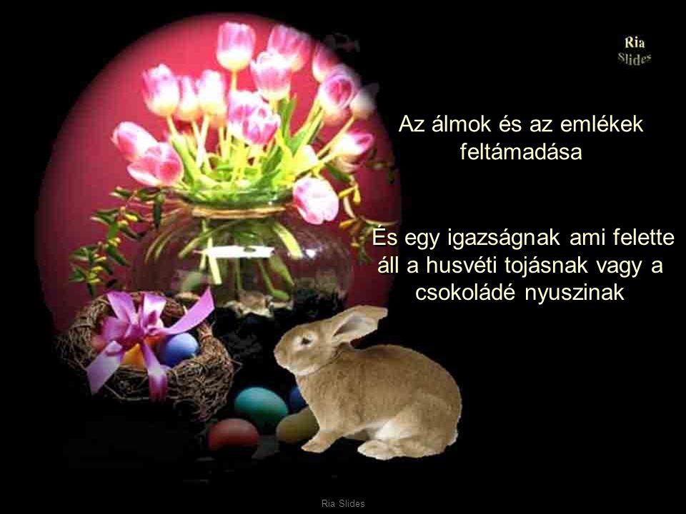 Ria Slides A mosoly az életöröm és a szeretet megszületése A barátság feltámadása és az akarat hogy boldogok legyünk.