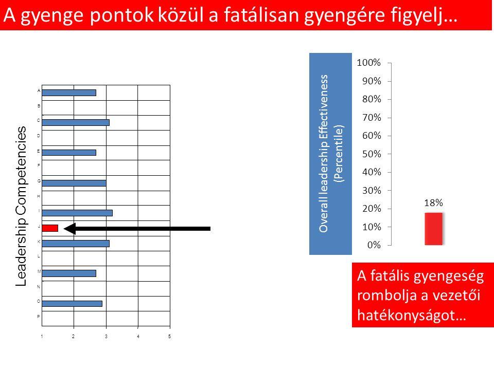 Leadership Competencies 12345 P O N M L K J I H G F E D C B A A gyenge pontok közül a fatálisan gyengére figyelj… A fatális gyengeség rombolja a vezetői hatékonyságot… Overall leadership Effectiveness (Percentile)