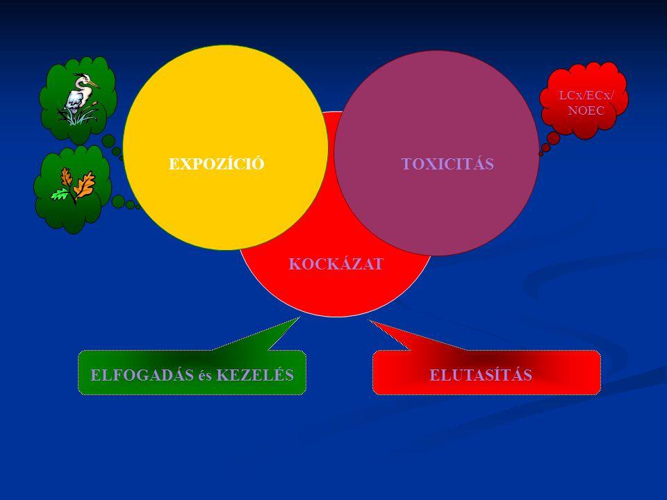 TOXICITÁSEXPOZÍCIÓ KOCKÁZAT ELFOGADÁS és KEZELÉSELUTASÍTÁS LCx/ECx/ NOEC