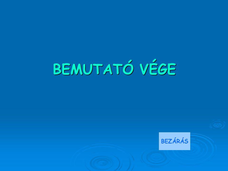 BEMUTATÓ VÉGE BEZÁRÁS
