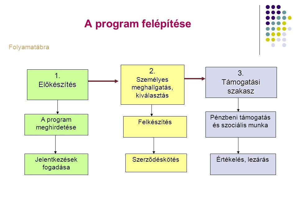 A program felépítése 1.Előkészítés A program meghirdetése Jelentkezések fogadása 2. Személyes meghallgatás, kiválasztás Szerződéskötés Felkészítés 3.