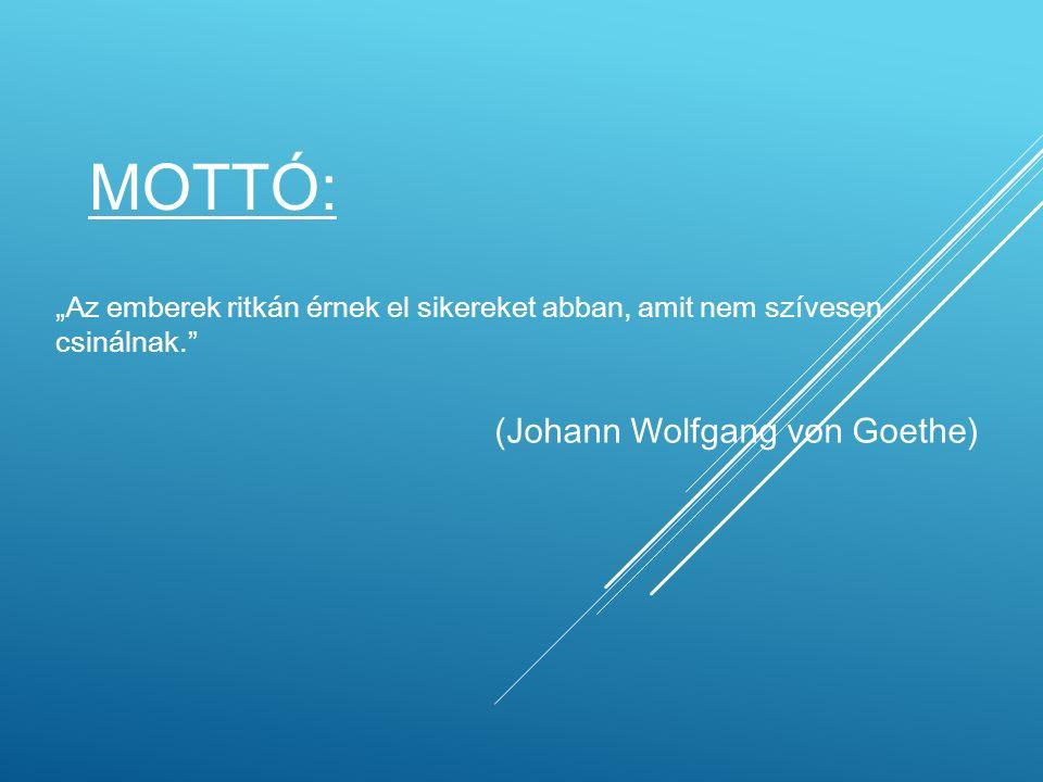 """MOTTÓ: """"Az emberek ritkán érnek el sikereket abban, amit nem szívesen csinálnak. (Johann Wolfgang von Goethe)"""