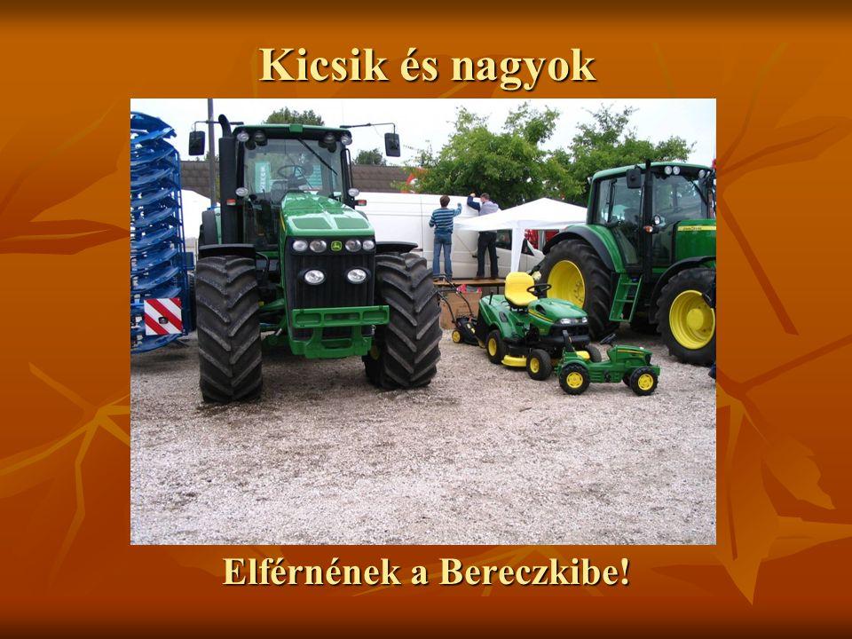 Kicsik és nagyok Elférnének a Bereczkibe!