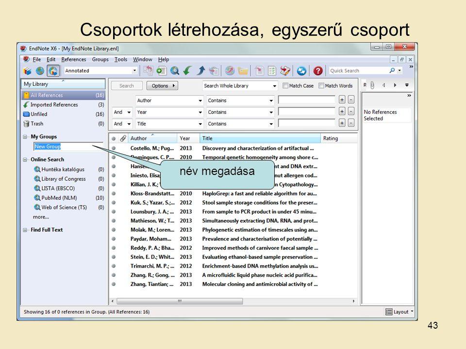 Csoportok létrehozása, egyszerű csoport név megadása 43