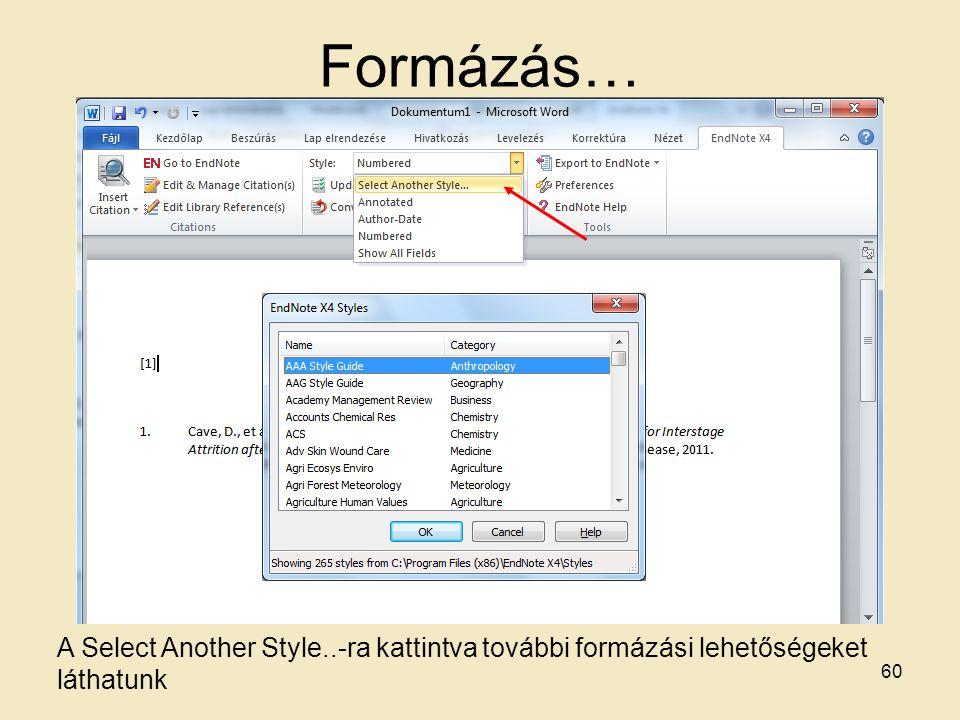 Formázás… A Select Another Style..-ra kattintva további formázási lehetőségeket láthatunk 60