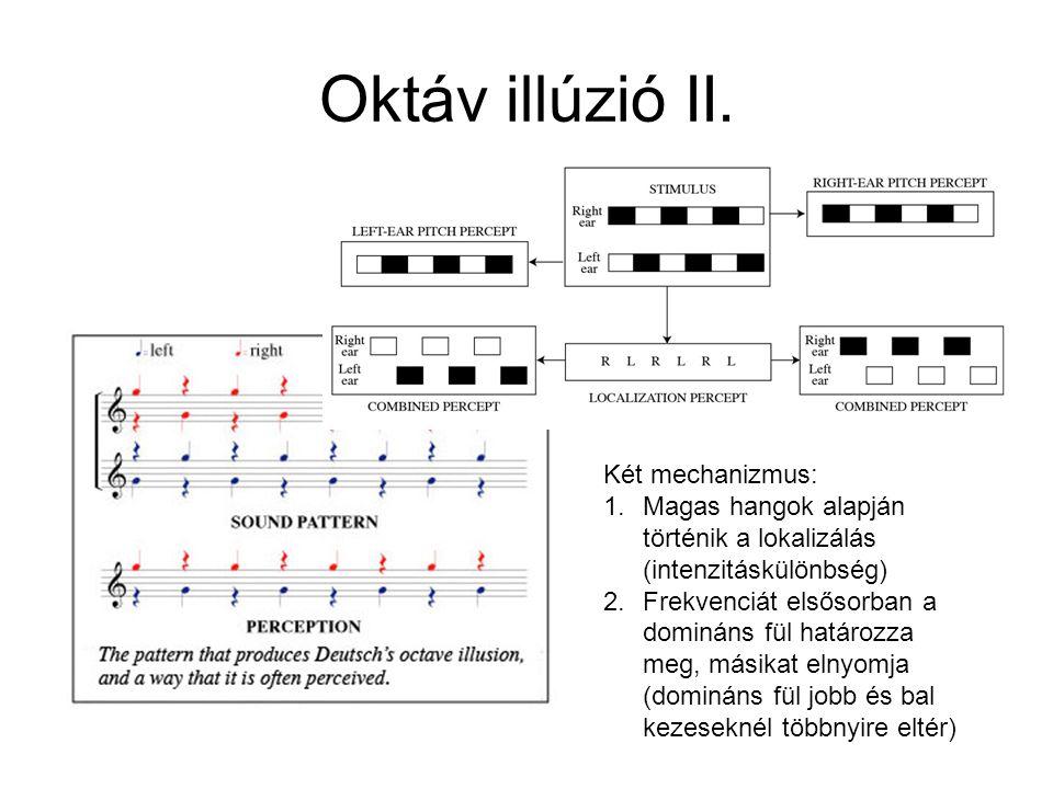 Oktáv illúzió II. Két mechanizmus: 1.Magas hangok alapján történik a lokalizálás (intenzitáskülönbség) 2.Frekvenciát elsősorban a domináns fül határoz