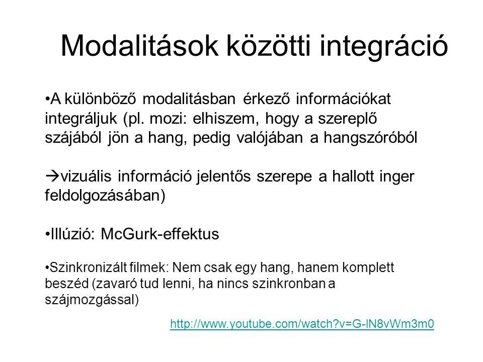Modalitások közötti integráció A különböző modalitásban érkező információkat integráljuk (pl. mozi: elhiszem, hogy a szereplő szájából jön a hang, ped
