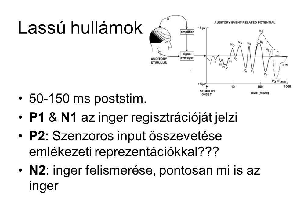 Lassú hullámok 50-150 ms poststim. P1 & N1 az inger regisztrációját jelzi P2: Szenzoros input összevetése emlékezeti reprezentációkkal??? N2: inger fe