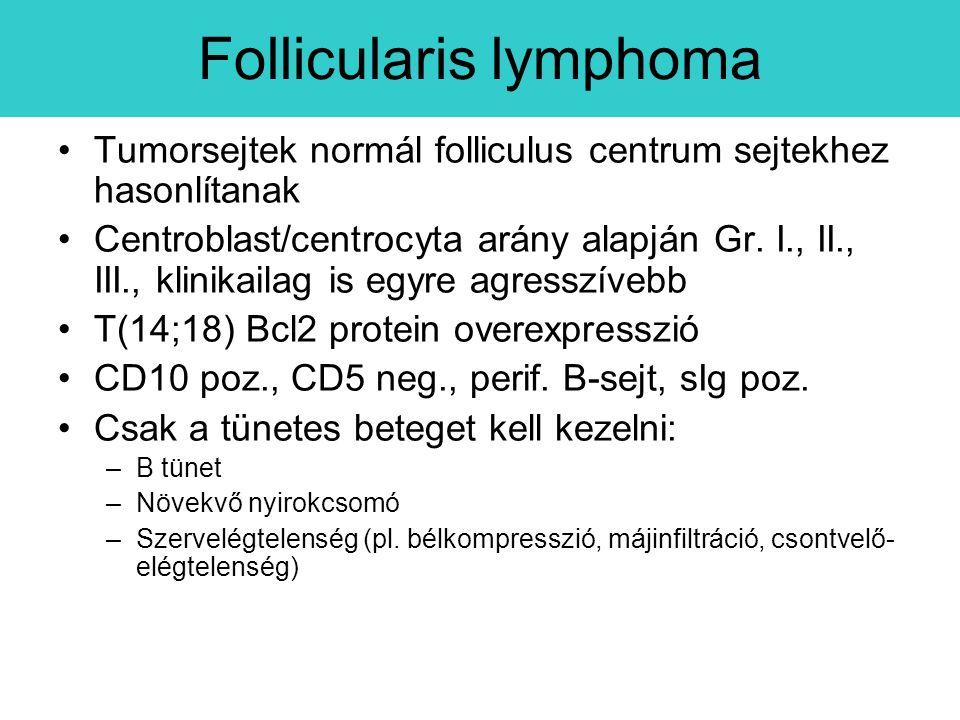 Tumorsejtek normál folliculus centrum sejtekhez hasonlítanak Centroblast/centrocyta arány alapján Gr.