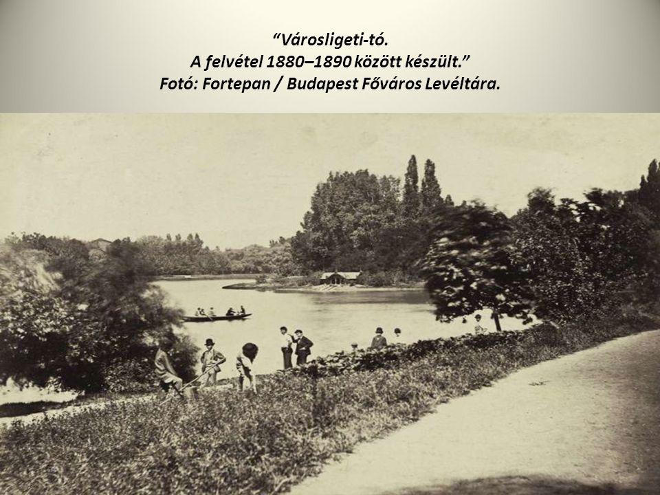 Városligeti-tó. A felvétel 1880–1890 között készült. Fotó: Fortepan / Budapest Főváros Levéltára.