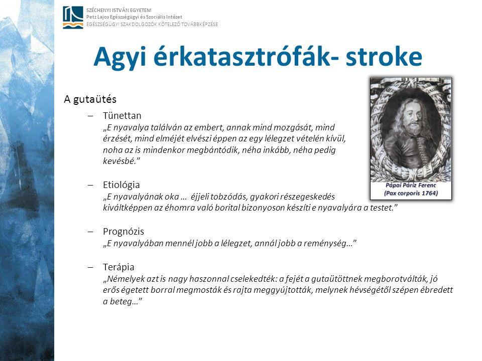 SZÉCHENYI ISTVÁN EGYETEM Petz Lajos Egészségügyi és Szociális Intézet EGÉSZSÉGÜGYI SZAKDOLGOZÓK KÖTELEZŐ TOVÁBBKÉPZÉSE Agyi érkatasztrófák- stroke A g