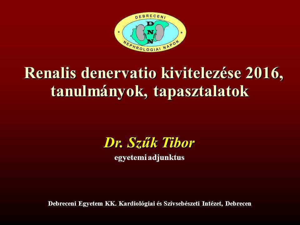 Renalis denervatio kivitelezése 2016, tanulmányok, tapasztalatok Renalis denervatio kivitelezése 2016, tanulmányok, tapasztalatok Dr.