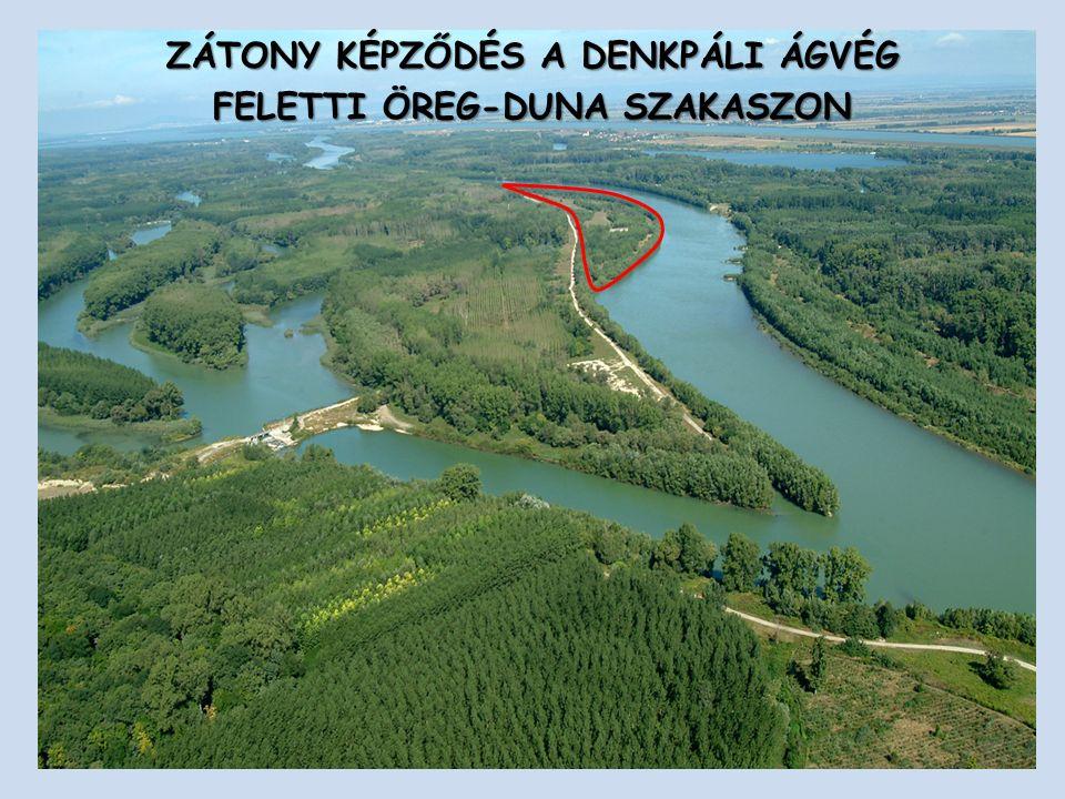 ZÁTONY KÉPZŐDÉS A DENKPÁLI ÁGVÉG FELETTI ÖREG-DUNA SZAKASZON