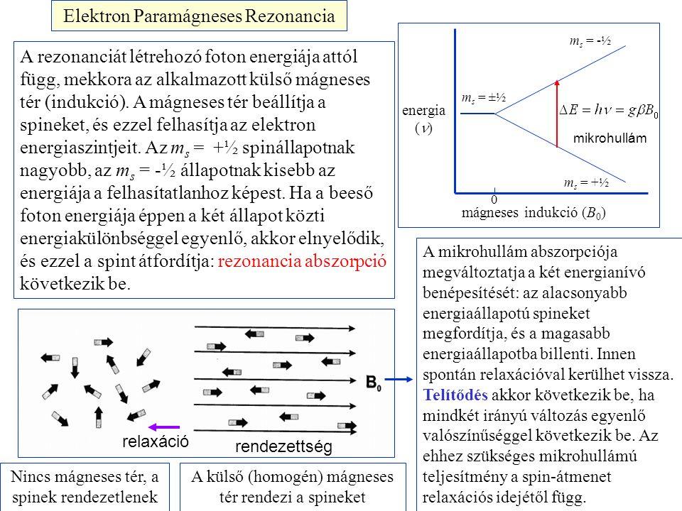 Elektron Paramágneses Rezonancia energia ( ) mágneses indukció (B 0 ) 0 m s = ±½ m s = -½ m s = +½ A rezonanciát létrehozó foton energiája attól függ, mekkora az alkalmazott külső mágneses tér (indukció).