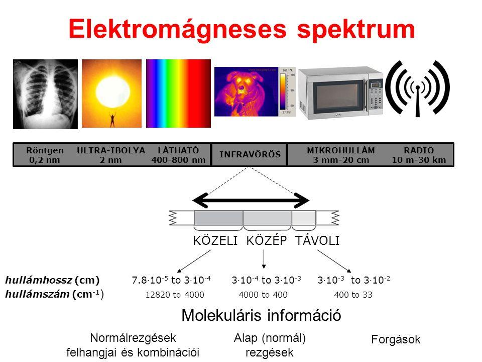 Elektromágneses spektrum Röntgen 0,2 nm ULTRA-IBOLYA 2 nm LÁTHATÓ 400-800 nm INFRAVÖRÖS MIKROHULLÁM 3 mm-20 cm RADIO 10 m-30 km TÁVOLIKÖZÉPKÖZELI hull
