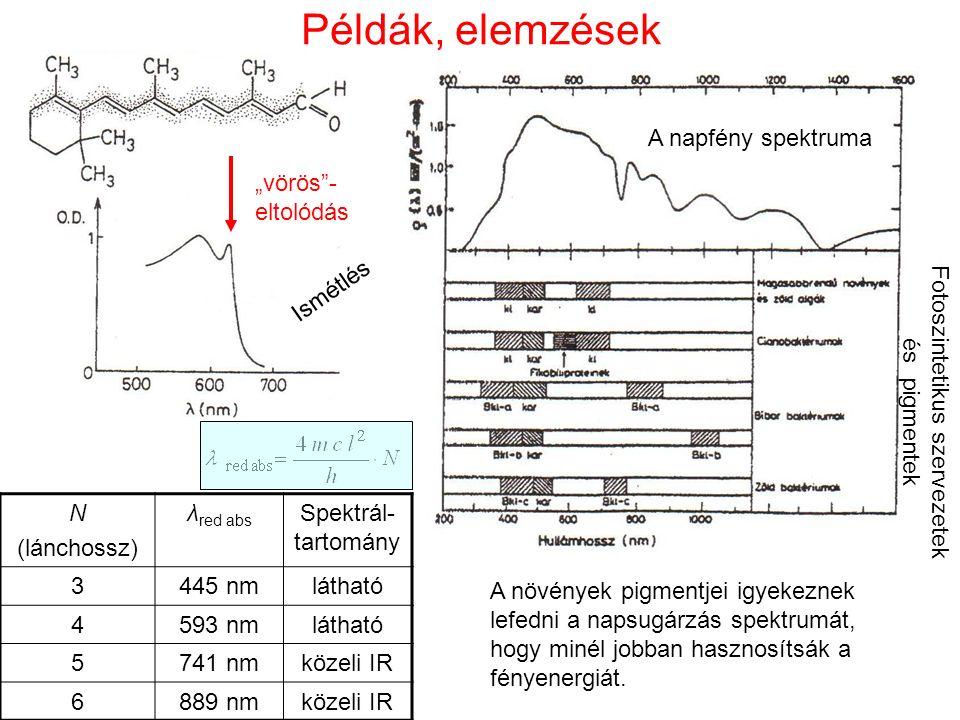 """Példák, elemzések N (lánchossz) λ red abs Spektrál- tartomány 3445 nmlátható 4593 nmlátható 5741 nmközeli IR 6889 nmközeli IR """"vörös - eltolódás A növények pigmentjei igyekeznek lefedni a napsugárzás spektrumát, hogy minél jobban hasznosítsák a fényenergiát."""