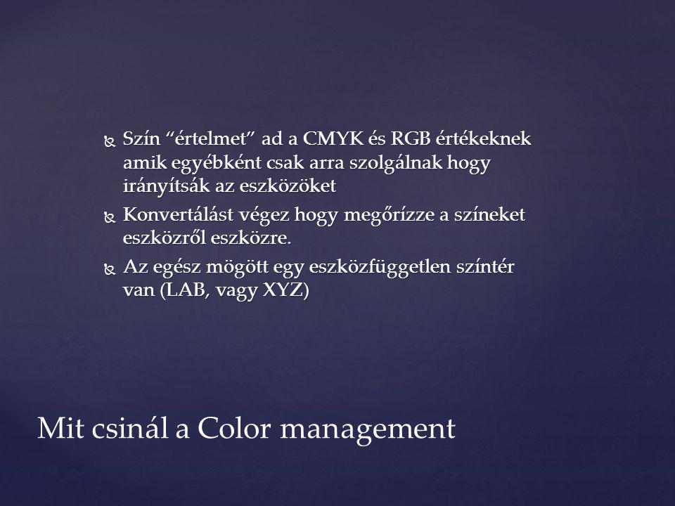  Szín értelmet ad a CMYK és RGB értékeknek amik egyébként csak arra szolgálnak hogy irányítsák az eszközöket  Konvertálást végez hogy megőrízze a színeket eszközről eszközre.