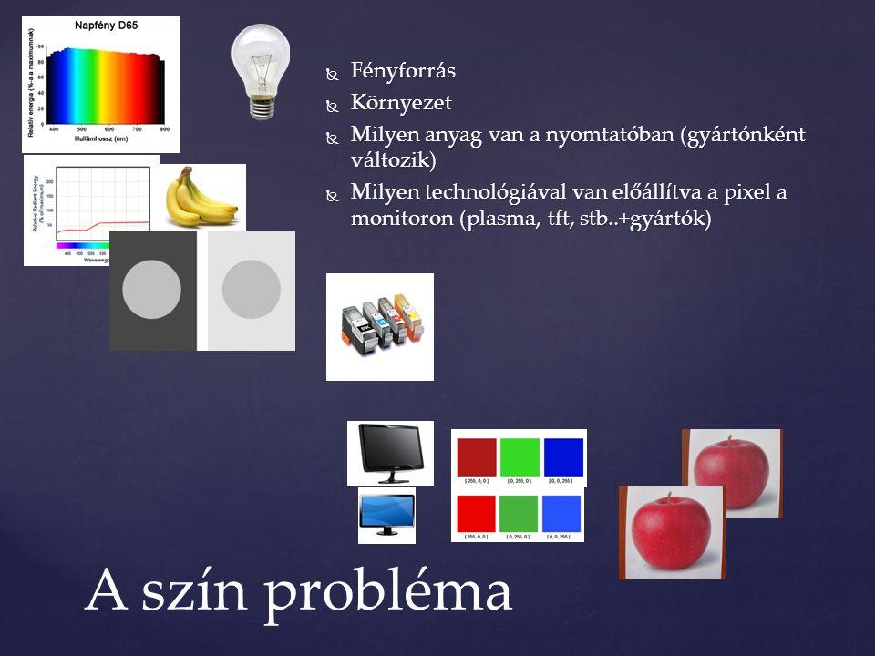  Fényforrás  Környezet  Milyen anyag van a nyomtatóban (gyártónként változik)  Milyen technológiával van előállítva a pixel a monitoron (plasma, tft, stb..+gyártók) A szín probléma