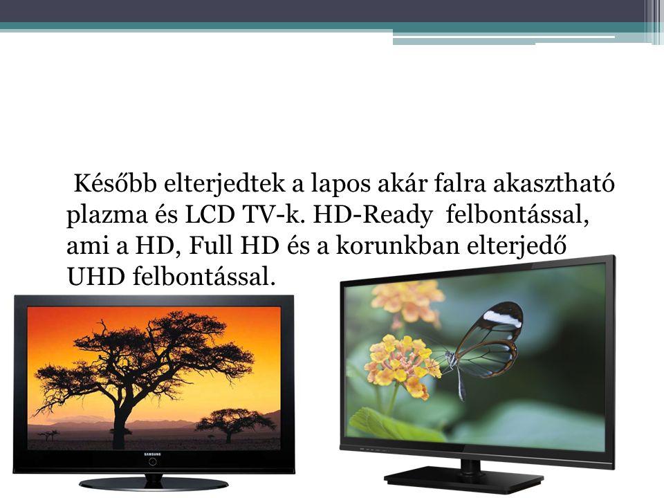 Később elterjedtek a lapos akár falra akasztható plazma és LCD TV-k.