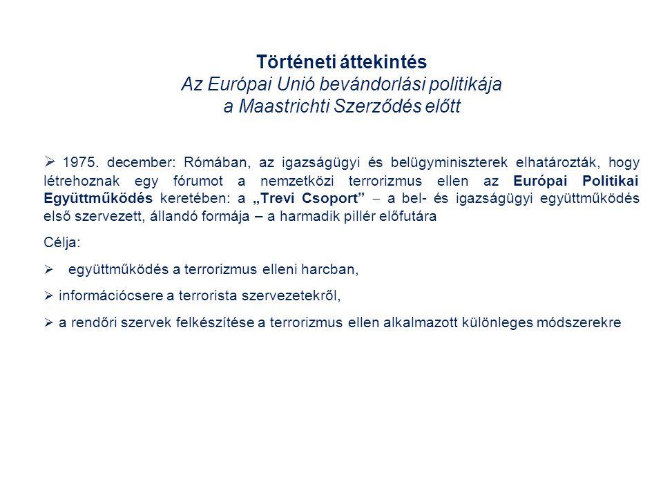 Történeti áttekintés Az Európai Unió bevándorlási politikája a Maastrichti Szerződés előtt  1975.