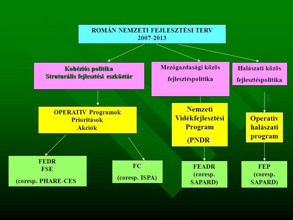 ROMÁN NEMZETI FEJLESZTÉSI TERV 2007-2013 OPERATIV Programok Prioritások Akciók Kohéziós politika Struturális fejlesztési eszköztár FEDR FSE (coresp.