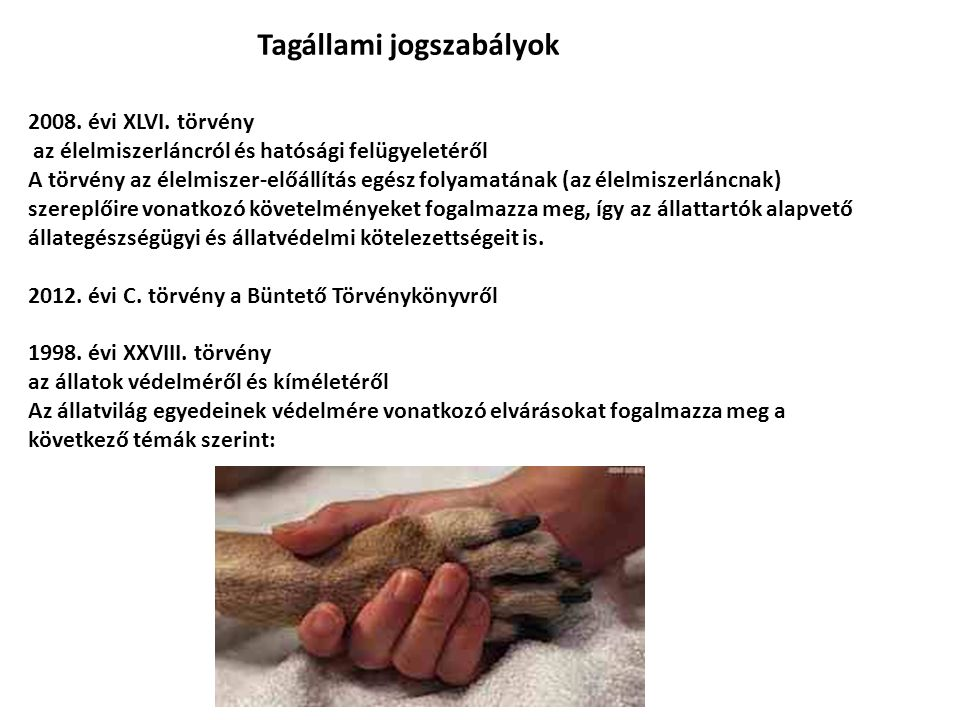 Tagállami jogszabályok 2008. évi XLVI.