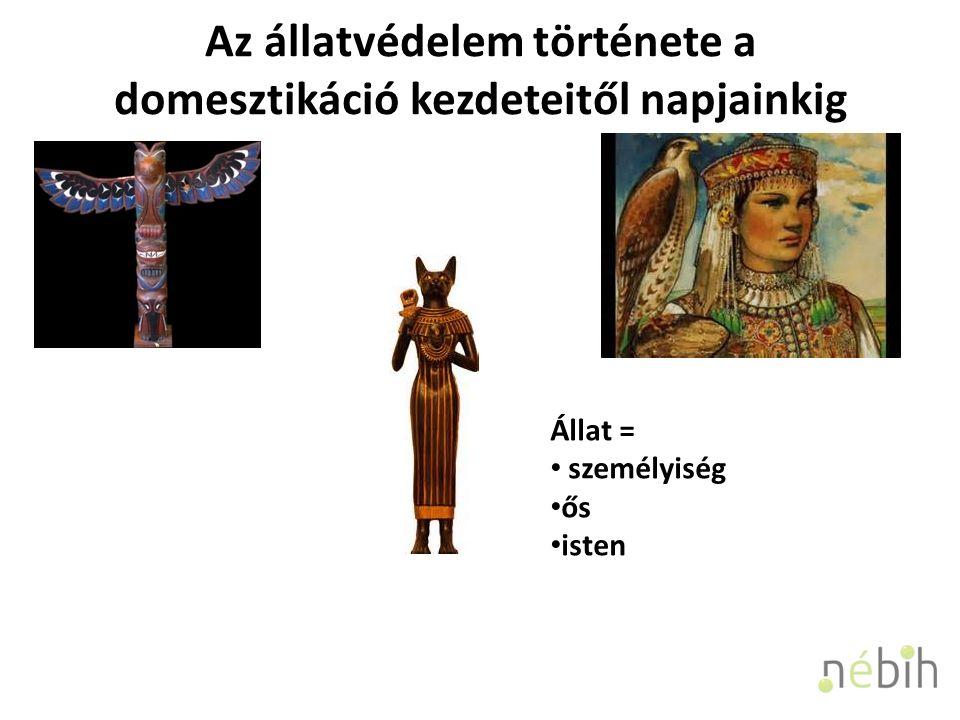 Az állatvédelem története a domesztikáció kezdeteitől napjainkig Állat = személyiség ős isten
