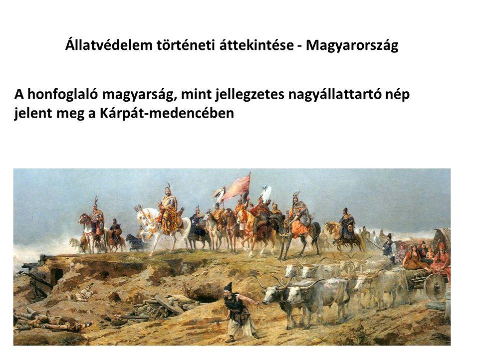 Állatvédelem történeti áttekintése - Magyarország A honfoglaló magyarság, mint jellegzetes nagyállattartó nép jelent meg a Kárpát-medencében