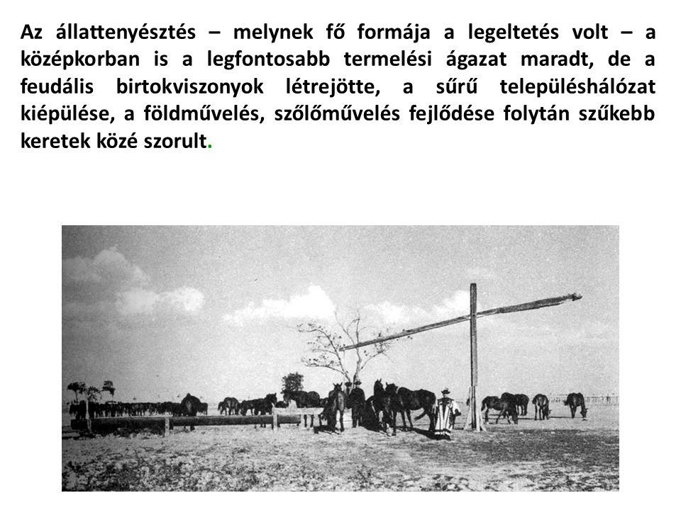 Az állattenyésztés – melynek fő formája a legeltetés volt – a középkorban is a legfontosabb termelési ágazat maradt, de a feudális birtokviszonyok létrejötte, a sűrű településhálózat kiépülése, a földművelés, szőlőművelés fejlődése folytán szűkebb keretek közé szorult.