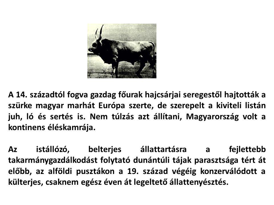 Állatkísérlet: 40/2013.(II. 14.) Korm. rendelet az állatkísérletekről Állatkert: 3/2001.