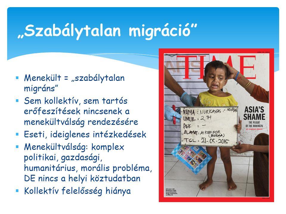 """ Menekült = """"szabálytalan migráns  Sem kollektív, sem tartós erőfeszítések nincsenek a menekültválság rendezésére  Eseti, ideiglenes intézkedések  Menekültválság: komplex politikai, gazdasági, humanitárius, morális probléma, DE nincs a helyi köztudatban  Kollektív felelősség hiánya """"Szabálytalan migráció"""
