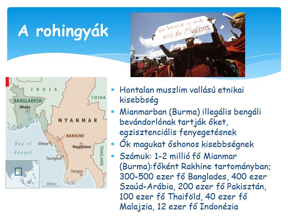  Hontalan muszlim vallású etnikai kisebbség  Mianmarban (Burma) illegális bengáli bevándorlónak tartják őket, egzisztenciális fenyegetésnek  Ők magukat őshonos kisebbségnek  Számuk: 1-2 millió fő Mianmar (Burma):főként Rakhine tartományban; 300-500 ezer fő Banglades, 400 ezer Szaúd-Arábia, 200 ezer fő Pakisztán, 100 ezer fő Thaiföld, 40 ezer fő Malajzia, 12 ezer fő Indonézia A rohingyák