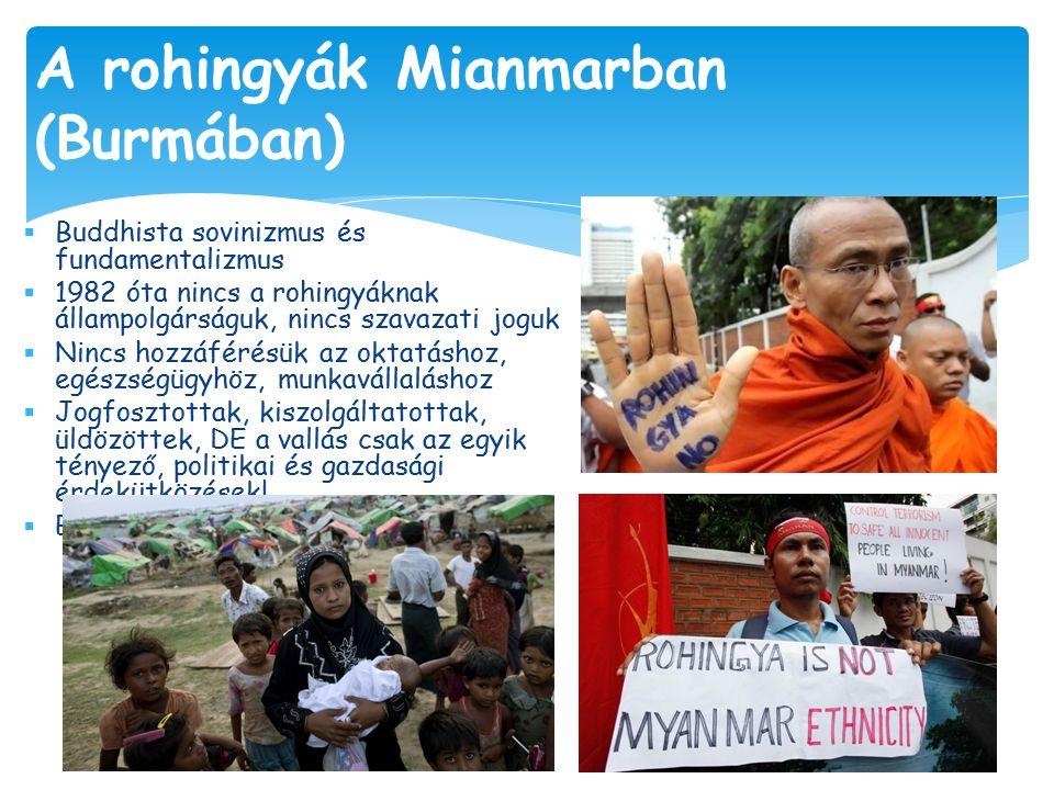  Buddhista sovinizmus és fundamentalizmus  1982 óta nincs a rohingyáknak állampolgárságuk, nincs szavazati joguk  Nincs hozzáférésük az oktatáshoz, egészségügyhöz, munkavállaláshoz  Jogfosztottak, kiszolgáltatottak, üldözöttek, DE a vallás csak az egyik tényező, politikai és gazdasági érdekütközések.