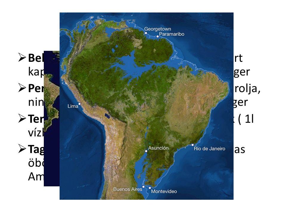 Fogalmak  Beltenger: keskeny tengerszoroson át tart kapcsolatot az óceánnal pl.