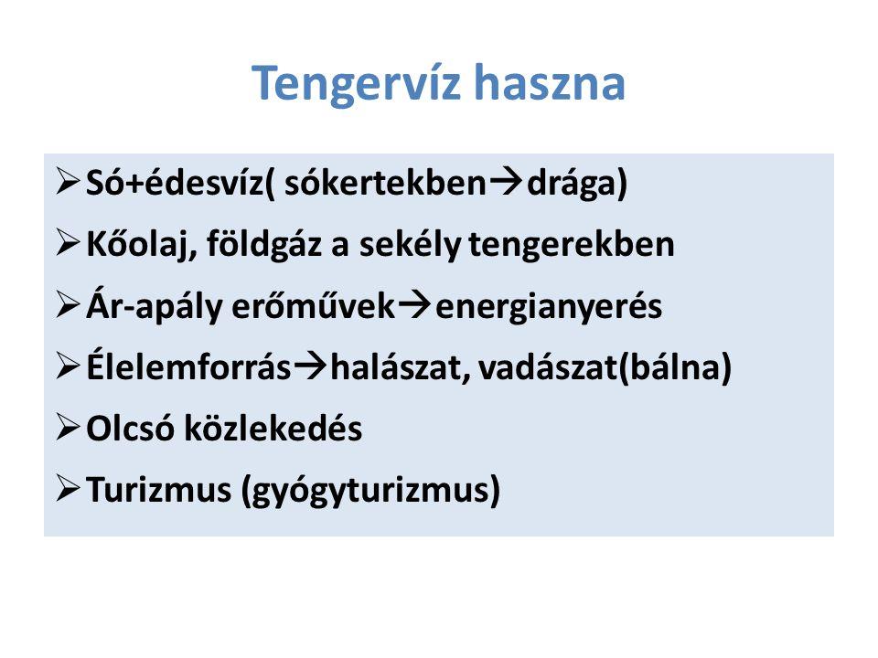 Tengervíz haszna  Só+édesvíz( sókertekben  drága)  Kőolaj, földgáz a sekély tengerekben  Ár-apály erőművek  energianyerés  Élelemforrás  halászat, vadászat(bálna)  Olcsó közlekedés  Turizmus (gyógyturizmus)