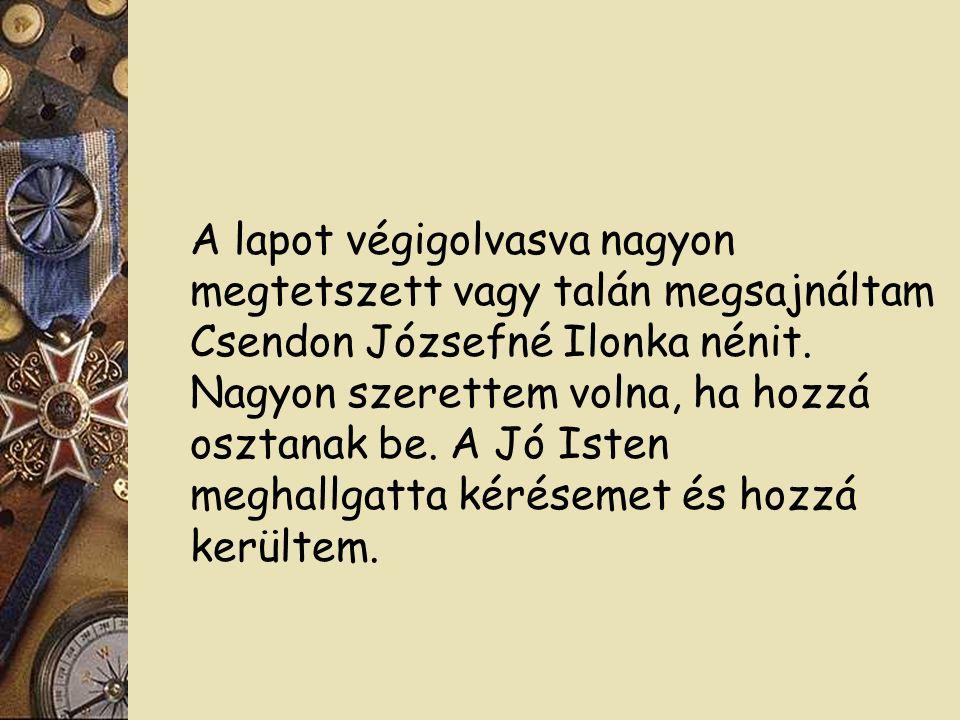 A lapot végigolvasva nagyon megtetszett vagy talán megsajnáltam Csendon Józsefné Ilonka nénit.