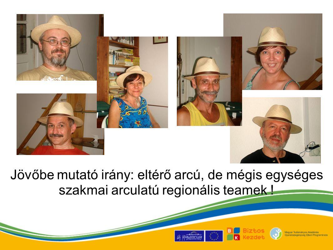 Jövőbe mutató irány: eltérő arcú, de mégis egységes szakmai arculatú regionális teamek !