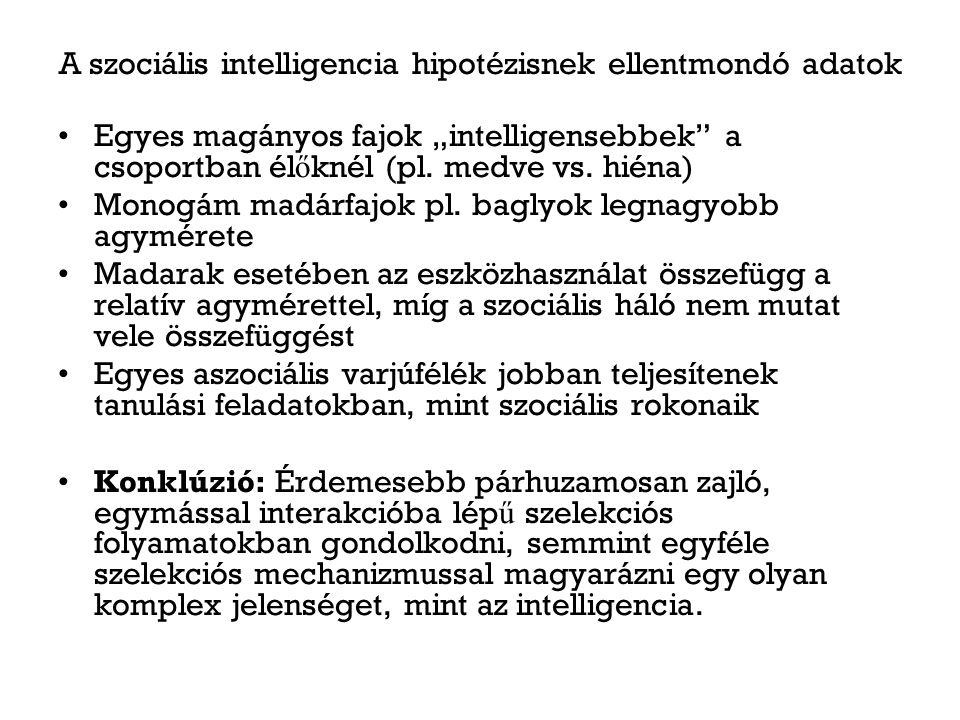 """A szociális intelligencia hipotézisnek ellentmondó adatok Egyes magányos fajok """"intelligensebbek a csoportban él ő knél (pl."""