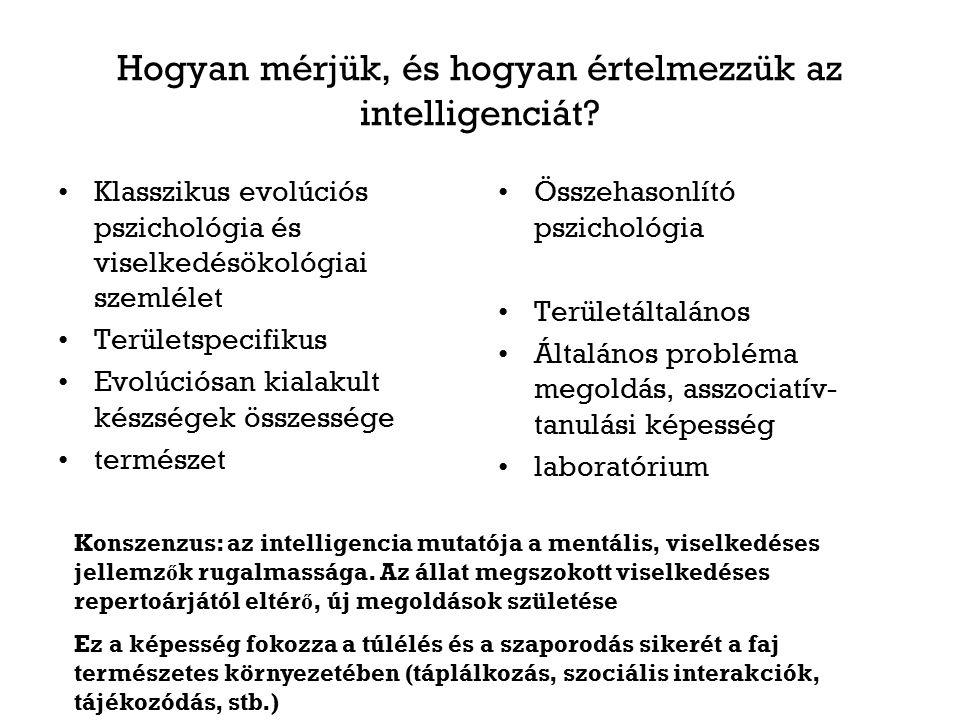 Hogyan mérjük, és hogyan értelmezzük az intelligenciát.