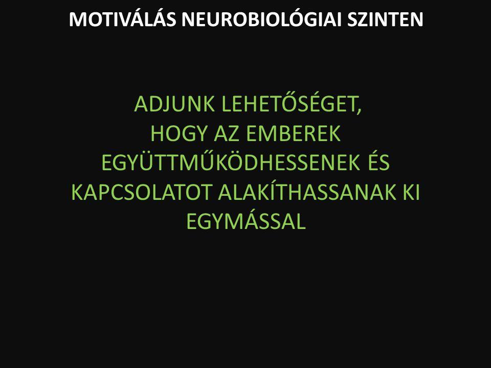 MOTIVÁLÁS NEUROBIOLÓGIAI SZINTEN ADJUNK LEHETŐSÉGET, HOGY AZ EMBEREK EGYÜTTMŰKÖDHESSENEK ÉS KAPCSOLATOT ALAKÍTHASSANAK KI EGYMÁSSAL