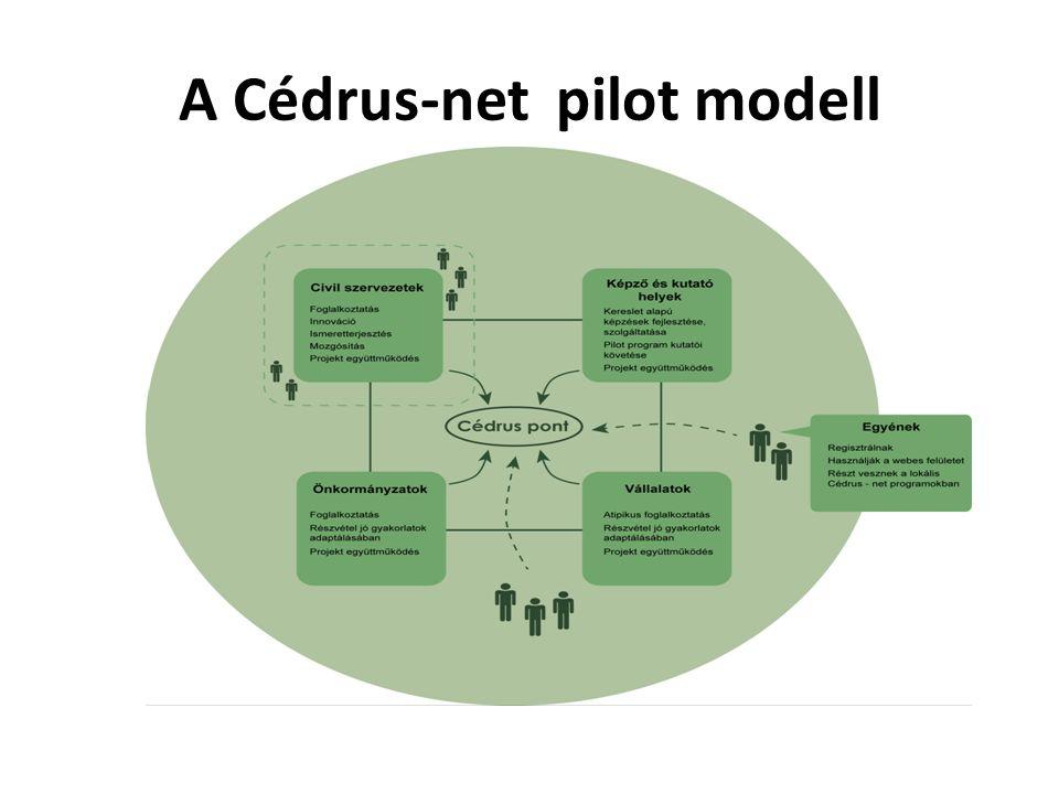 A Cédrus-net pilot modell