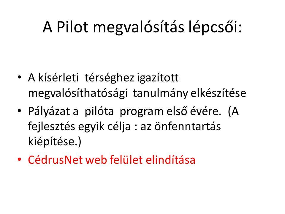 A Pilot megvalósítás lépcsői: A kísérleti térséghez igazított megvalósíthatósági tanulmány elkészítése Pályázat a pilóta program első évére.