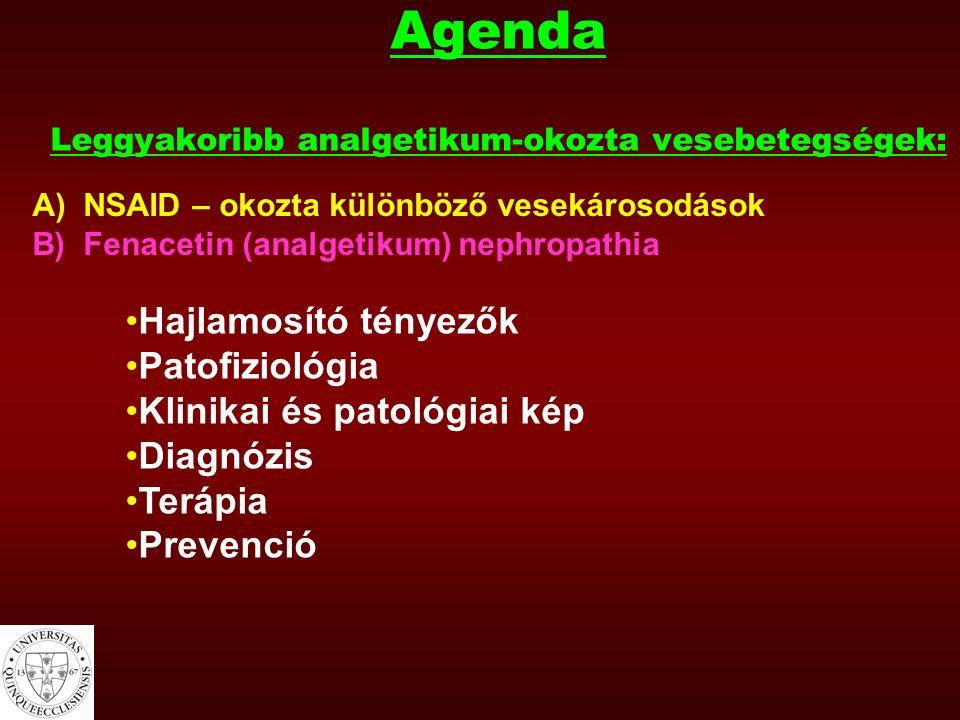 Agenda Leggyakoribb analgetikum-okozta vesebetegségek: A) NSAID – okozta különböző vesekárosodások B) Fenacetin (analgetikum) nephropathia Hajlamosító tényezők Patofiziológia Klinikai és patológiai kép Diagnózis Terápia Prevenció