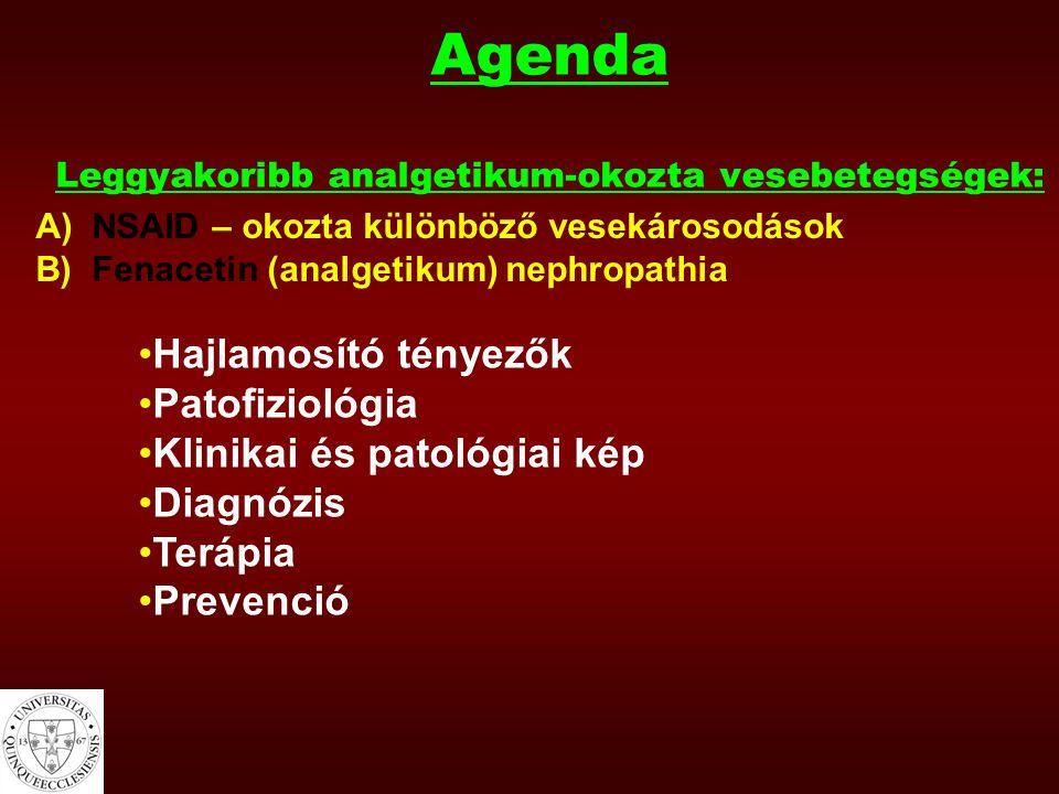 A/ NSAID-okozta vesekárosodások leggyakoribb típusai: 1)Prerenális vagy funkcionális vesekárosodás (ok: hemodinamikai károsodás) 2)Akut tubulointerstitiális nephritis (ok: hiperszenzitivitás) 3)Glomerulonephritis (főleg membranosus) 4)Analgetikum nephropathia (NSAID csak kombinációban okozza)