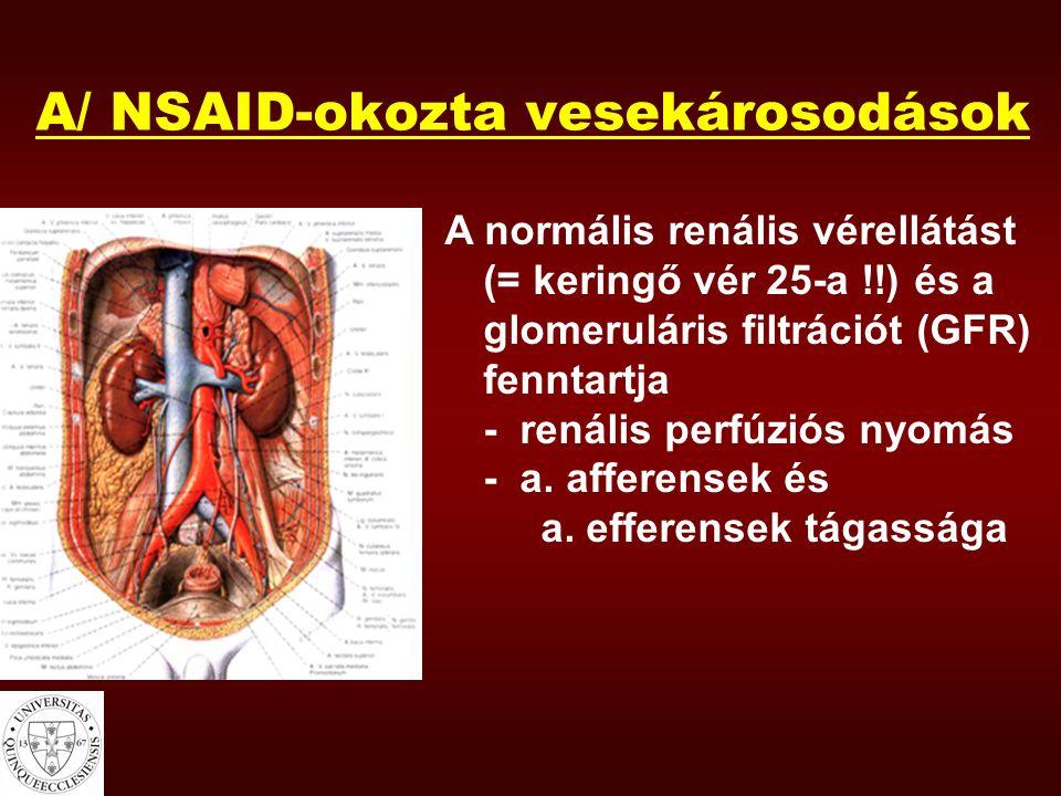 A/ NSAID-okozta vesekárosodások A normális renális vérellátást (= keringő vér 25-a !!) és a glomeruláris filtrációt (GFR) fenntartja - renális perfúzi