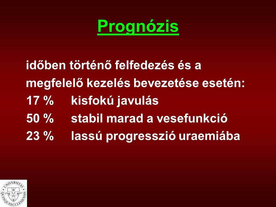 Prognózis időben történő felfedezés és a megfelelő kezelés bevezetése esetén: 17 %kisfokú javulás 50 %stabil marad a vesefunkció 23 %lassú progresszió