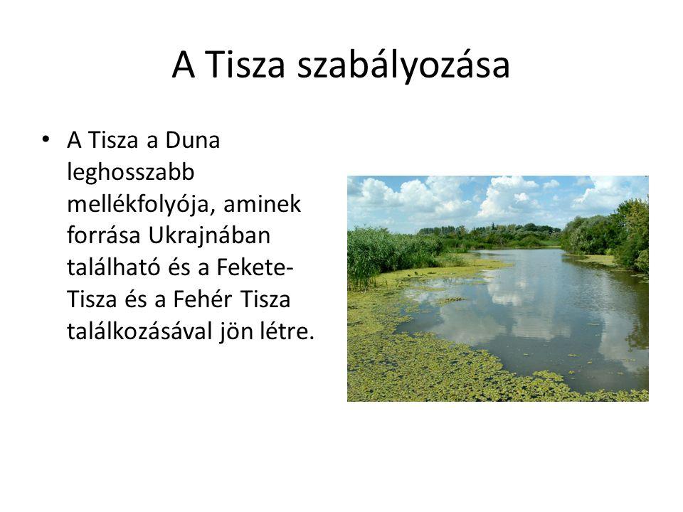 A Tisza szabályozása A Tisza a Duna leghosszabb mellékfolyója, aminek forrása Ukrajnában található és a Fekete- Tisza és a Fehér Tisza találkozásával jön létre.