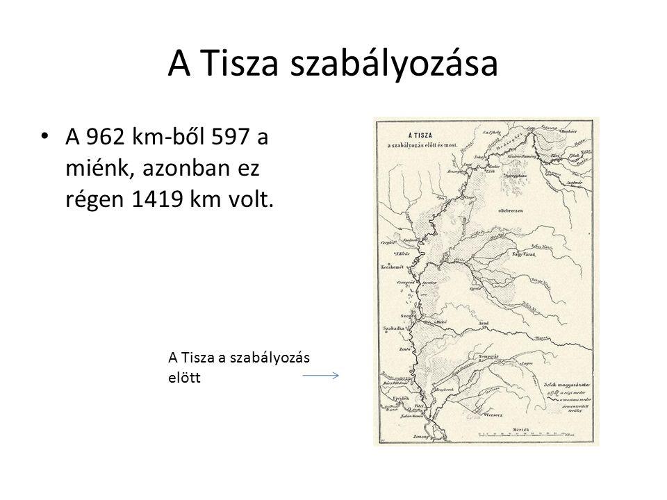A Tisza szabályozása A Tisza szabályozásához az vezetett, hogy az Alföldön nagyon lelassult a folyása, ezért rengeteg kanyart és mellékágat alakított ki.